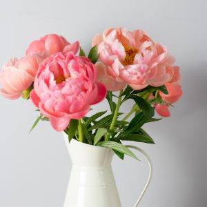 Peony bunches