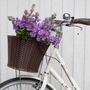 Scented purple stock bunch in bike basket