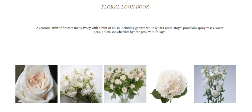Images of flowers that might be used